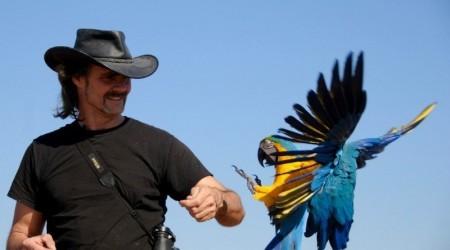 Крис Биро - свободные полеты с попугаями