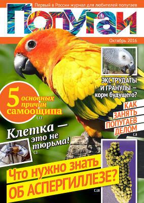 первый журнал для любителей попугаев в России