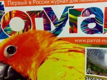 журнал попугаи первый номер, содержание, статьи, авторы
