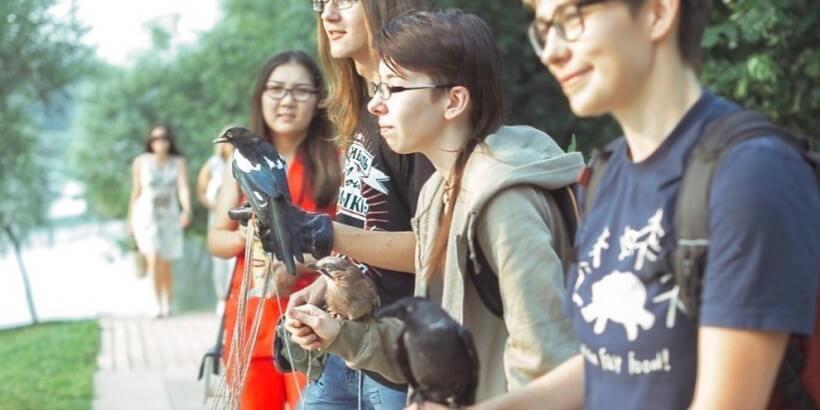 встреча любителей птиц в Москве 28 января 2017 года, совы, врановые, попугаи, хищные птицы,