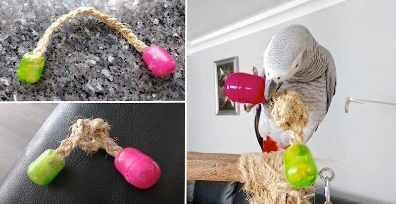 самодельные игрушки для попугаев жако