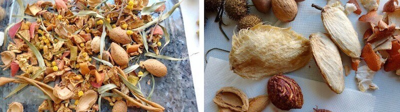 эвкаплипт, миндаль, манго, косточки персиков, состав кормушки- копошилки для жако