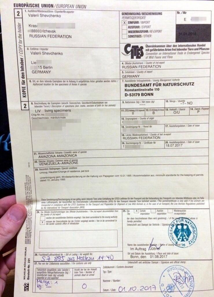 сертификат СИТЕС/CITES на ввоз/импорт попугая в Германию
