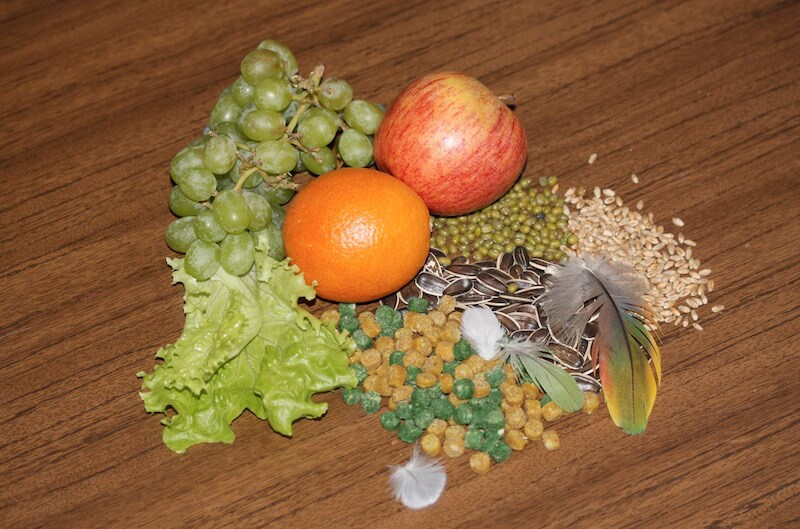 гранулированные корма фиори микропиллс для попугаев, отзывы