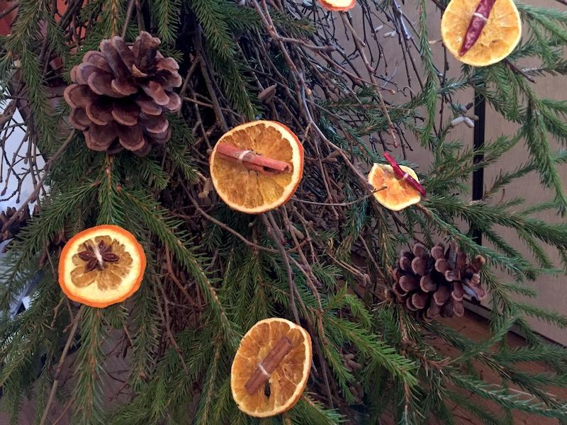 лакомство для попугаев из сухих долек апельсинов и специй