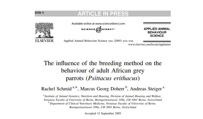 статья о влиянии методов выкармливания птенцов попугаев жако на поведение
