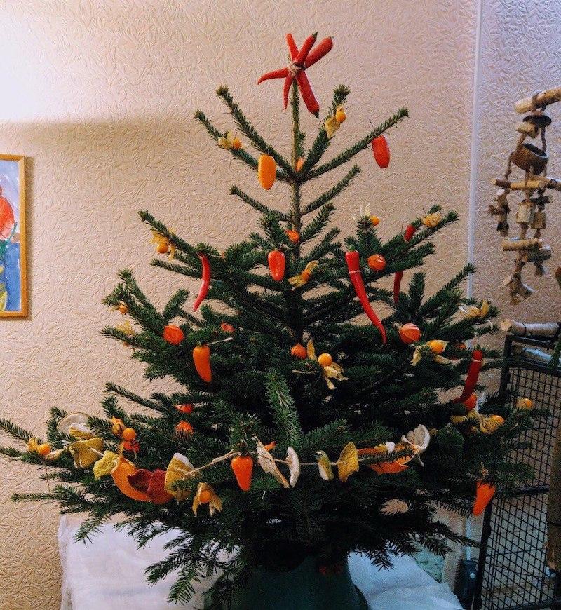 украшение елки для попугая